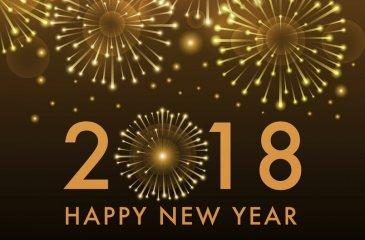 Je vous souhaite une année étincelante !!